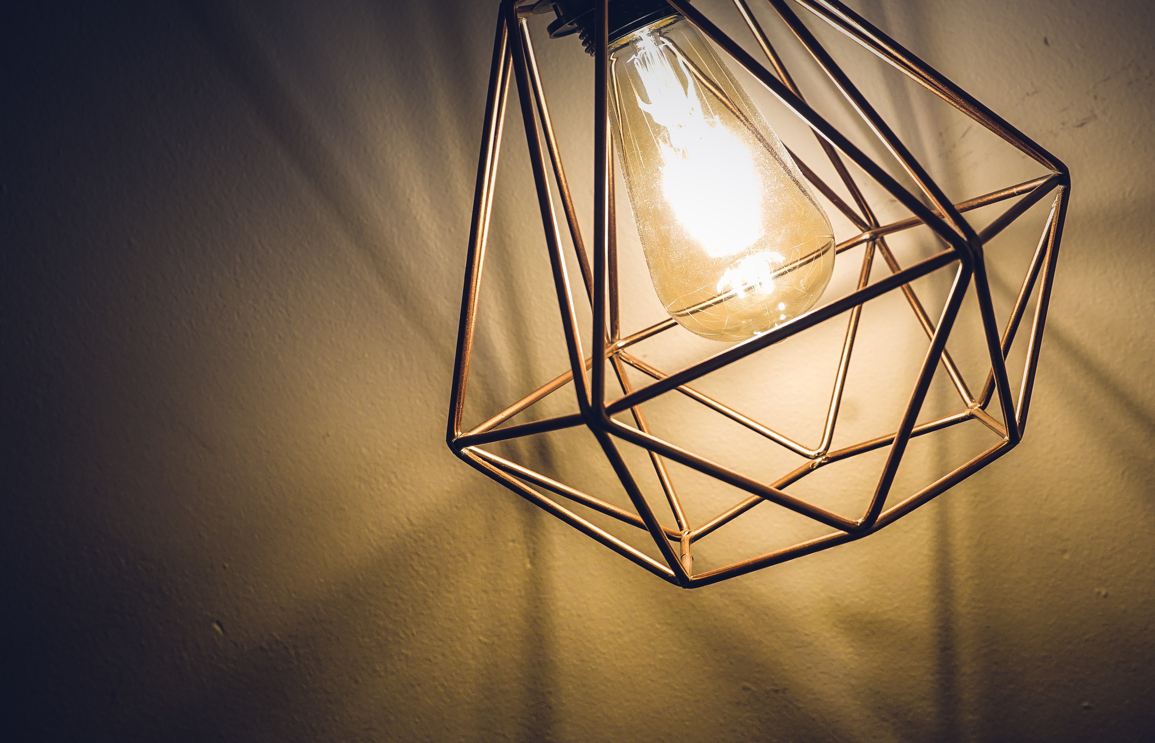 light fixture with edison bulb